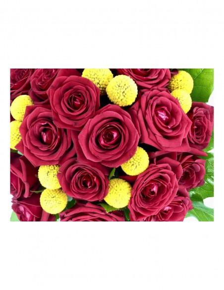 rose rosse e craspidia