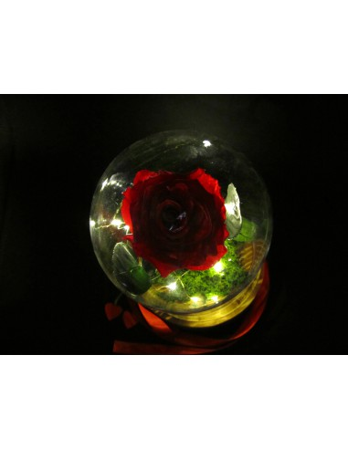 rosa eterna campana di vetro
