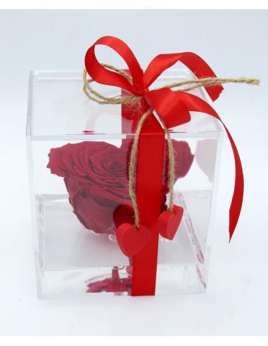 rosa stabilizzata cuore