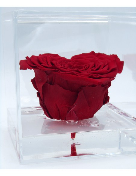 rosa cuore