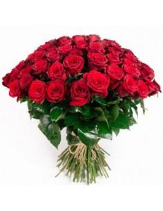 Cinquanta rose
