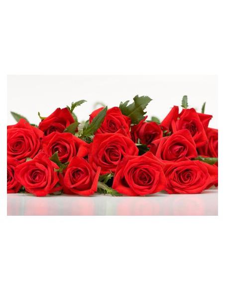 rose rosse per san valentino-festa  della mamma - compleanno Amore
