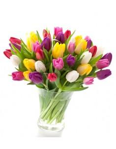 mazzo misto di tulipani colorati