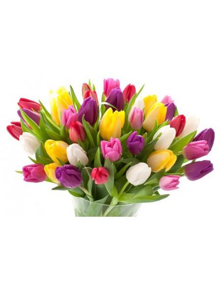Mazzo di tulipani da regalare