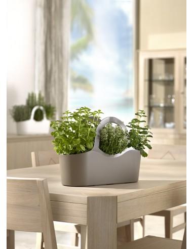 Vaso per piante aromatiche