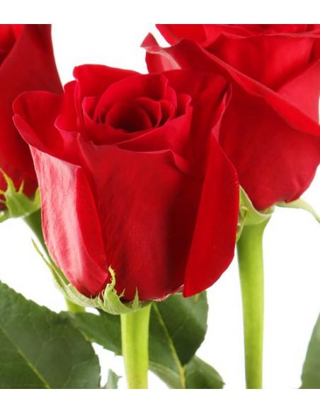 Regalare 3 rose rosse- rose a domicilio-rose online