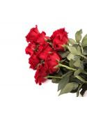 nove rose rosse in confezione regalo