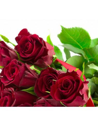 12 rose San valentino-festa della mamma-festa della donna