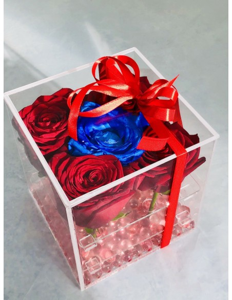 rose in scatola trasparente