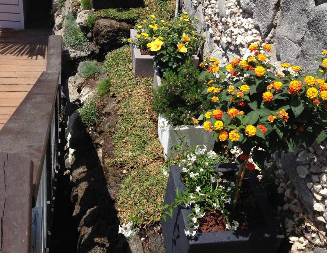 Manutenzione Giardini Napoli