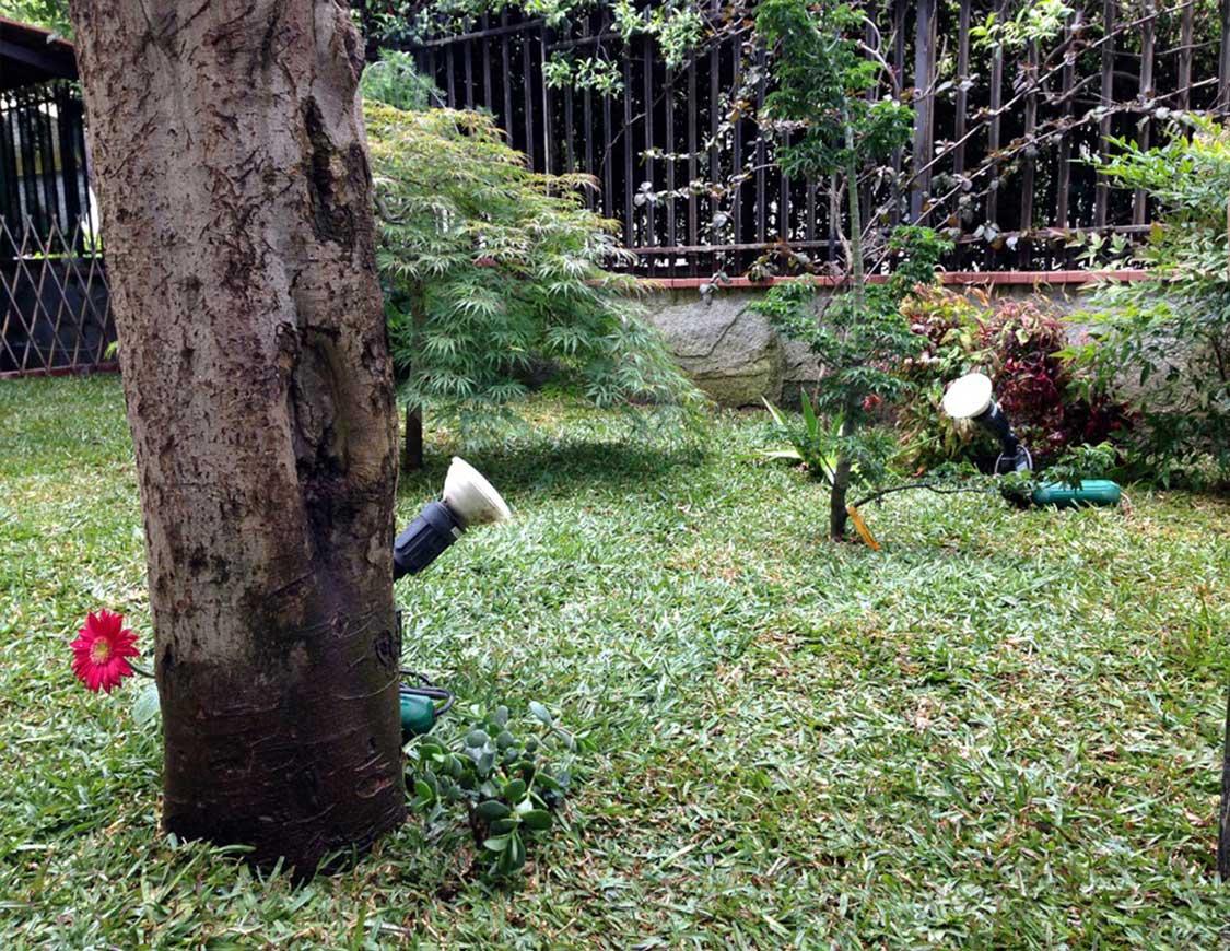 Lavori Giardiniere Napoli